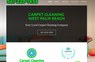 web designer carpet cleaning royal palm